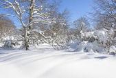 Entzia mountain range in winter, Basque Country (Spain) — Stock Photo