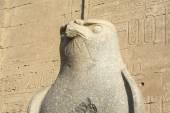 The statue of Horus at Edfu Temple, Egypt — Stock Photo