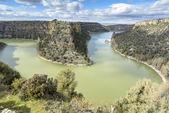 Duraton Kanyon Tabiat Parkı Segovia, İspanya — Stok fotoğraf