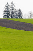 Cultivated farmers field — Stock Photo
