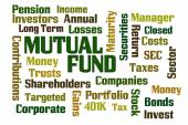 Mutual Fund — Stock Photo