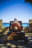 Spanish cannon — Stock Photo
