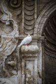 Ville espagnole de Valence — Photo