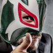 Businessman with Mexican wrestler mask — Stock Photo #70152787