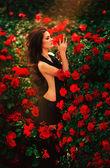 Woman near rose bushes — Stock Photo