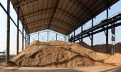 Bagasse stockpile — Stock Photo