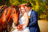 Young couple riding a brown horse at countryside at summer — Stock Photo
