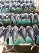 Tuna fish at a market — Stock Photo
