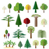 Trees from different regions of the world — Stock Vector