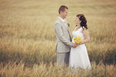 Bride and groom walking on wheat field — Stock Photo