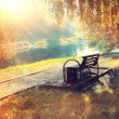 Bench in the autumn park — Stock Photo #55338637