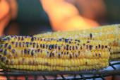 Corn on grill — Stock Photo