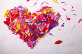 Heart of colorful flower petals — Stock Photo