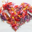 Heart of colorful flower petals — Stock Photo #55766855