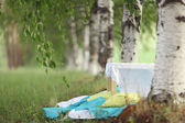 Table among  birches — Stock Photo