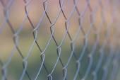 Wire netting — Stock Photo
