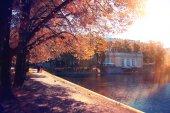 Lagoa parque — Foto Stock