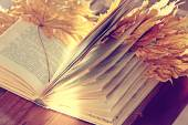 Autumn book — Stock Photo