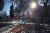 Autumn snowy park — Stock Photo