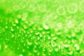 Green drops background — Stock Photo