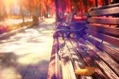 Parque outono — Foto Stock