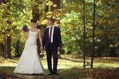Wedding couple in park — Stock Photo