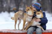 Little boy and two dogs in winter — Stock Photo