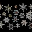 Set of Snowflake ice crystals — Stock Photo #67790359