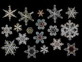 Set of Snowflake ice crystals — Stock Photo