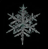 Snowflake ice crystal — Stock Photo