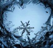 Snowflake ice crystal — Stock Photo