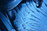 Modré Led textury pozadí — Stock fotografie