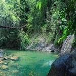 Rope bridge in jungle — Stock Photo #67968781