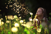 Little girl blowing dandelion flower — Stock Photo