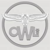 White owl — Stock Vector