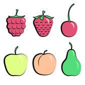 Berries — Stock Vector