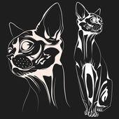 Cat1 vector — Stock Vector