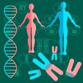 Set genetics people — Stock Vector