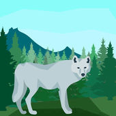 Wolf in the coniferous forest, animals and nature — Stock Vector