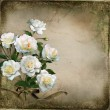 Beautiful vintage background with white roses — Stock Photo #66050659