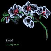 Vector illustration handmade drawing pastel chalks floral backgr — Stock Vector