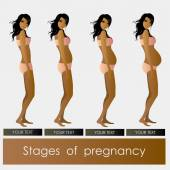 Stages of Pregnancy beautiful girl — Stock Vector