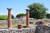 Ruins of ancient greek city Paestum, Italy. — Stock Photo
