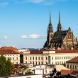 St, Peter and Paul cathedral in Brno — Stock Photo #58455285