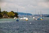 Zürih Gölü yelkenlileri — Stok fotoğraf
