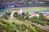 Countryside of southern Moravia — Stock Photo