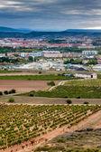 Aerial view of Logrono — Stock Photo