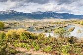 Countryside near Laguardia village — Stock Photo