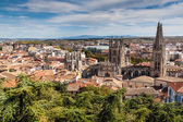 Aerial view of cathedral — Foto Stock