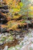 Natural park Sierra de Cebollera — Stock Photo